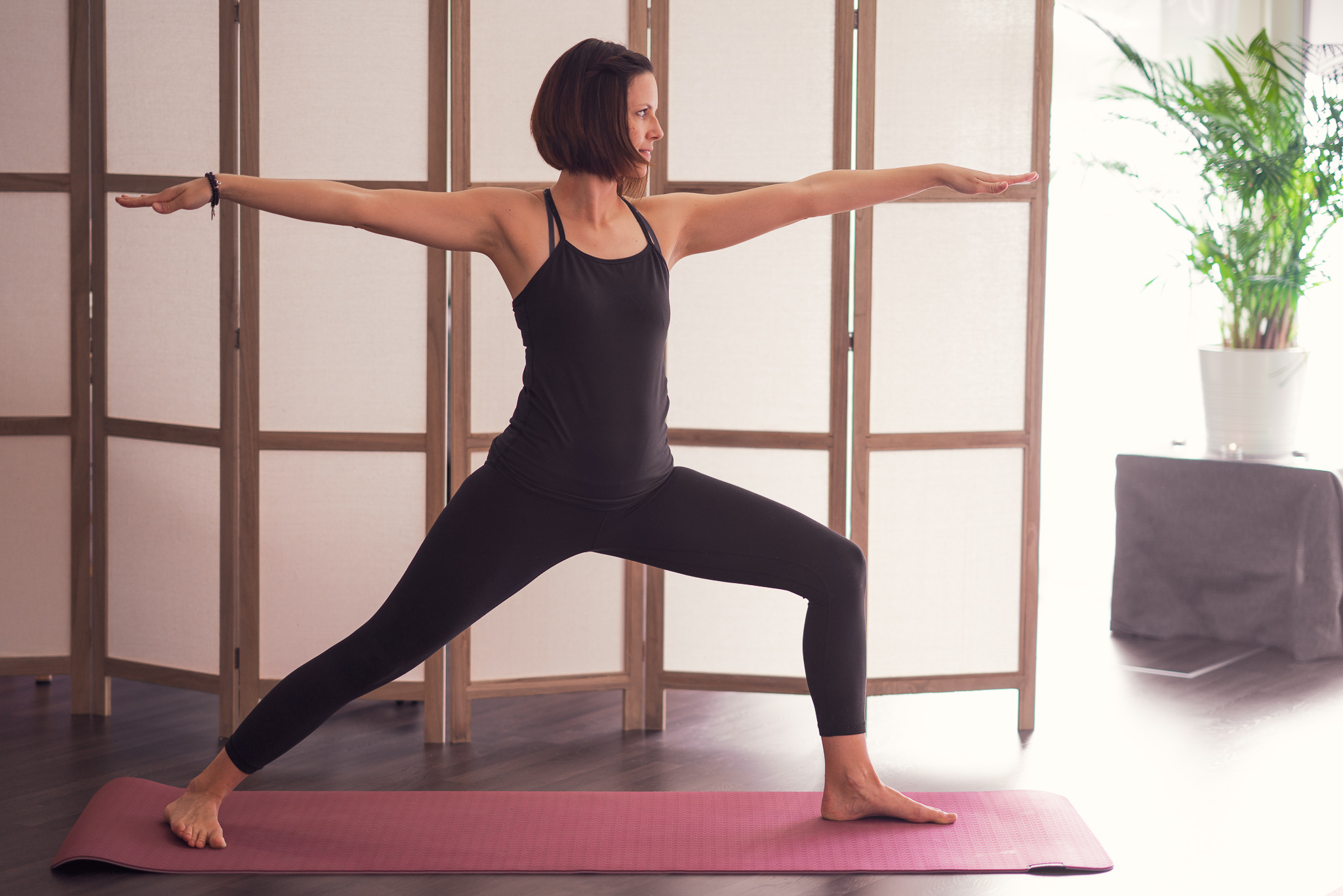 yoga guerrière